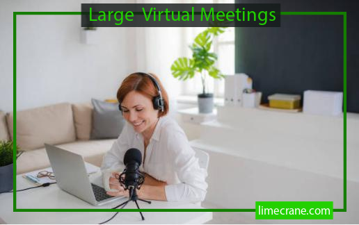 Large Virtual Meetings and Live Video